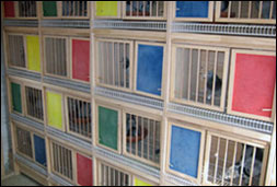 Breeding Boxes